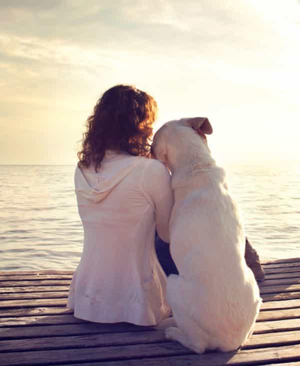 Votre chien ressent les choses. Lorsque vous êtes triste il est là pour vous consoler
