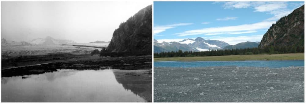 Glacier des ours, Alaska. Juillet 1909 - Août 2005. - 21 Trends