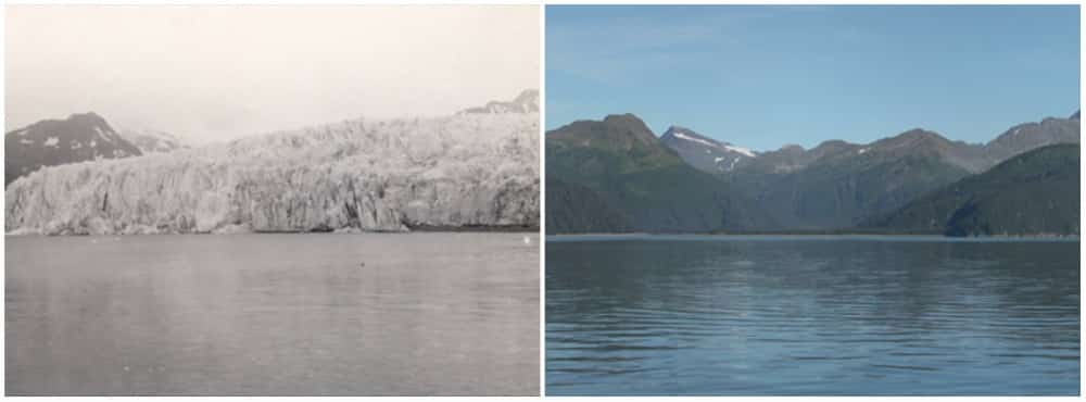 Glacier McCarty, Alaska. Juillet 1909 - Août 2004. - 21 Trends