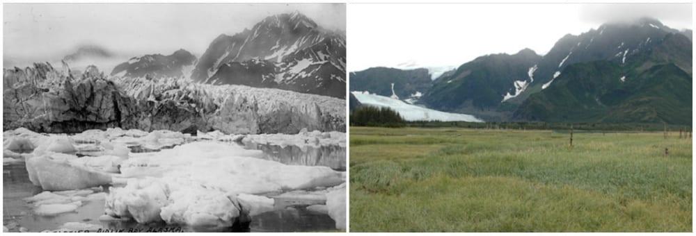 Glacier Pedersen, Alaska. Été, 1917 - été, 2005. - 21 Trends