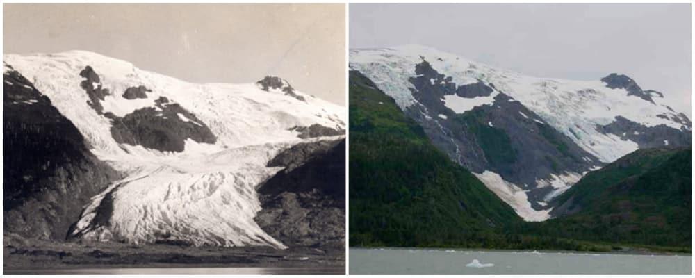Le glacier Toboggan, Alaska. Juin 1909 - septembre 2000 - 21 Trends