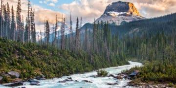 Le trésor des Montagnes Rocheuses découvert - 21 Trends