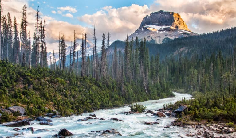 Etats-Unis : Le trésor des Montagnes Rocheuses découvert !