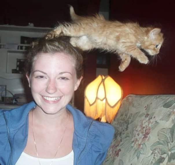 21 Trends - Le chat qui saute